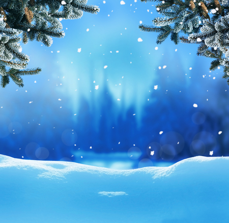 Christmas background with fir tree branch.Winter night landscape Stock Photo