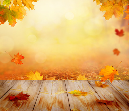 Autumn maple leaves on wooden table. Falling leaves natural background.