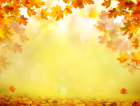 Autumn background with maple leaves Stock Photo - 110084984