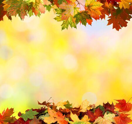 Herbst Hintergrund mit Ahornblättern