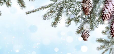 Winter  background .Merry Christmas and happy New Year greeting card with copy-space. Christmas landscape with snow and fir tree Stock Photo