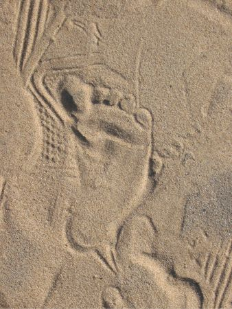 A Childs Print in the Sand