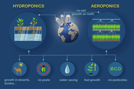 Aeroponic and hydroponic growing systems with Earth planet. Colored vector infographics