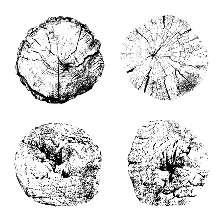 Top view of cut tree trunks isolated on white background. Textures of wood stumps with rings. Black and white vector illustration