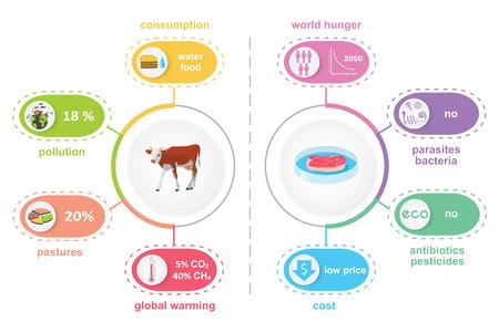 Infografiken zu kultiviertem, im Labor angebautem Fleisch. Vergleich von synthetischem In-vitro-Futter und Rindfleisch. Biotechnologische Industrie und ökologisches Konzept. Farbvektorillustration