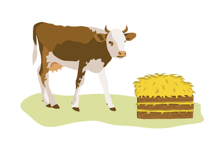 Cow or calf with stack of hay. Color flat vector illustration isolated on white background