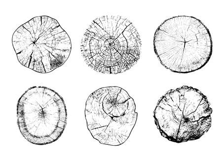 Set of cut tree trunks with circular rings isolated on white background. Textures of wood logs. Black and white vector illustration Ilustração