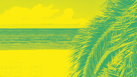 Palm tree with duotone effect. Abstract color background of sea beach
