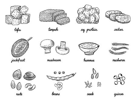 Ensemble d'alternatives à la viande dessinées à la main ou d'analogues pour les végétaliens, les végétariens, une alimentation saine. Icônes alimentaires de protéines de soja, haricots, tempeh etc. Illustration vectorielle doodle noir et blanc