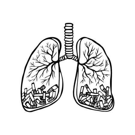Hand drawn cigarettes in human lungs. Unhealthy habit smoking concept. Black and white sketched vector illustration Illustration