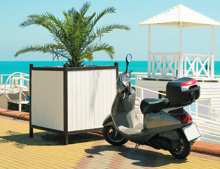 Scooter parked outdoors at beach and palm leaves background at sunny summer day Archivio Fotografico