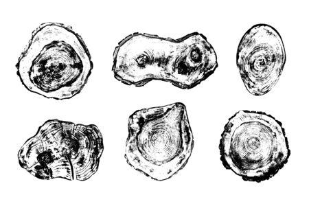Satz von Grunge-Stümpfen Textur auf weißem Hintergrund. Baumquerschnitte in verschiedenen Formen. Standard-Bild