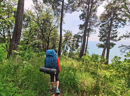 Active woman with backpack and tourist equipment walking in forest 免版税图像