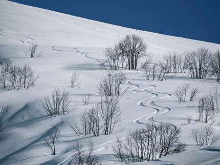 First off piste snowboard tracks on powder snow