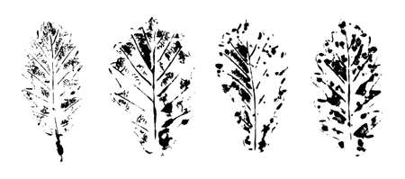 Texture of ink stamps of leaves. Grunge silhouettes of plants