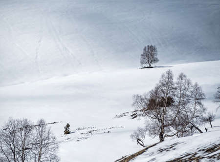 Snowy valley. Winter natural background with copy space