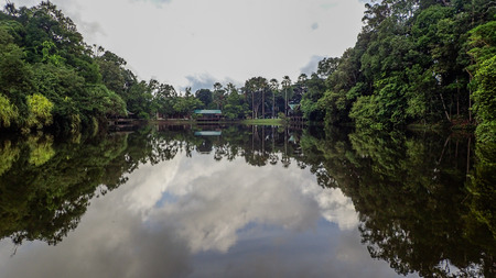 sandakan: The lake at Rainforest Discovery Centre In Sepilok, Borneo Stock Photo