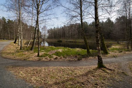 kristiansand: Svarttjern, a Frog and Toad pond in Baneheia in Kristiansand, Norway