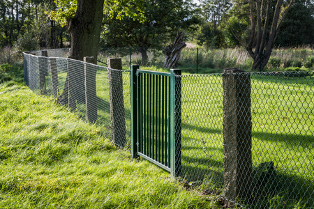 Metal grille fence with green gate in green surroundings