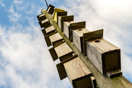 hole: Many wooden boxes for birds hanging on an electricity pole Stock Photo
