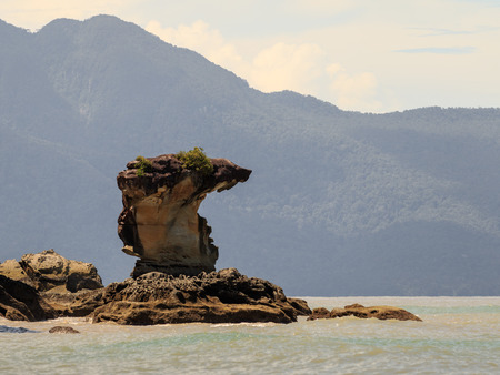 Cobrahead sea stack in Bako National Park, Borneo in Malaysia