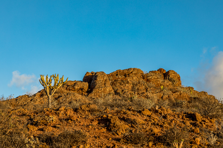 Mountain Peak with cactus vegetation, at Astronomic Observatory in Temisas, Gran Canaria.