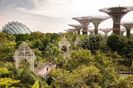 Singapore - december 2018: Aerial view of the botanical garden, Gardens by the Bay in Singapore.