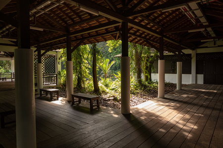 SINGAPORE - December 2018: View to the beautiful nature from inside building at the Sungei Buloh Wetland Reserve. Editöryel