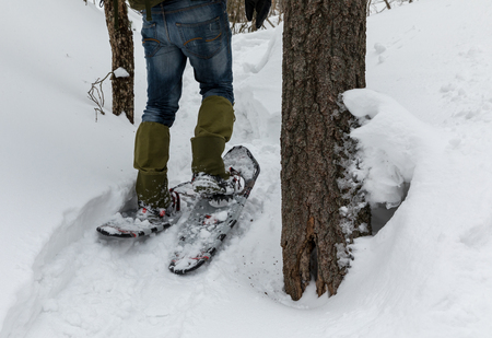 Man in snowshoes in the snow in the forest. Stock Photo