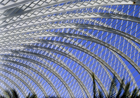 Structure of the city of Sciences in Valencia Stock Photo - 17078895