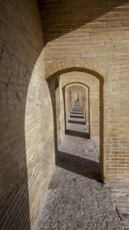 particolare: Particolare visione del Khaju Ponte, Isfahan, Iran
