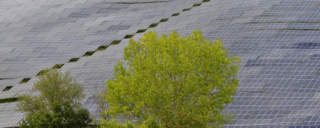Solar cells immersed in deep nature photo