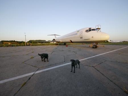 Bulgaria Military Aircraft Graveyard 9