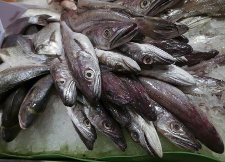 Fishes on market stall