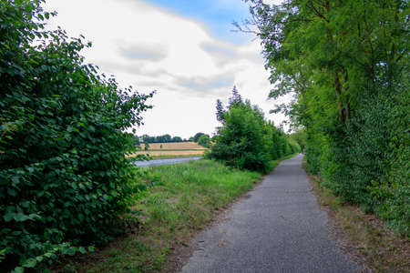 Empty path amidst trees in rural landscpae with blus ky in summer in Bad Friedrichshall, Germany