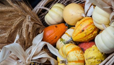 bounty: Decoraci�n de la mesa de la canasta de oto�o generosidad de madera Foto de archivo