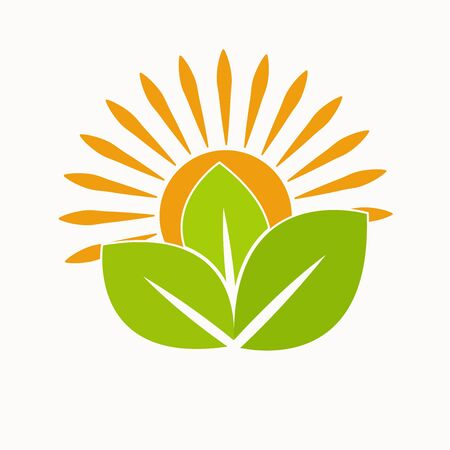 Nature Green Landscape Sunrise Logo Template. sun vector illustration Icon Logo Template