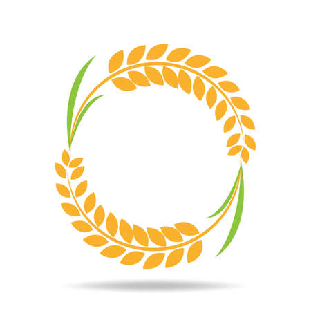 Rice organic Circle paddy grain products and healthy food design vector