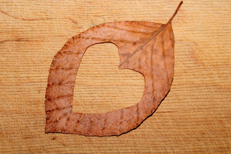Heart in autumn leaf