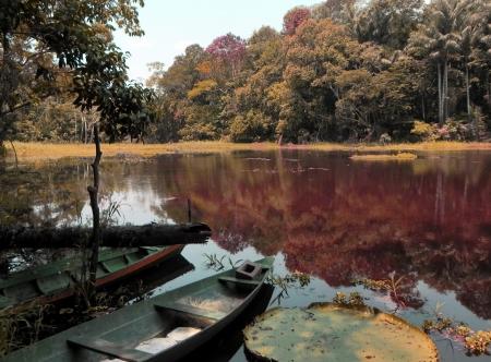 amazonia: Boat on the lake at Amazonia - Brasil