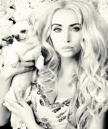 glamour girl holding small dog photo