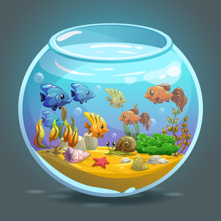 Aquarium with fishes, algae and decorations