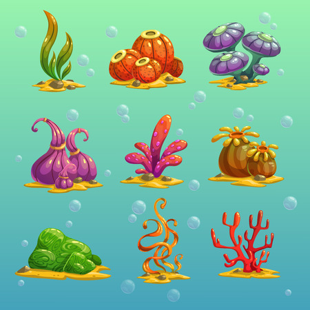 alga: Cartoon algae vector set