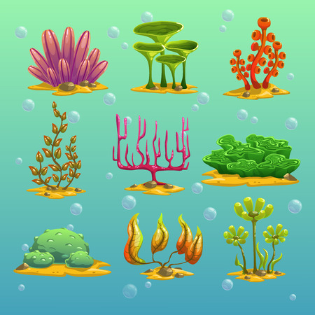 coral reef underwater: Cartoon algae, underwater elements, vector set 2 Illustration