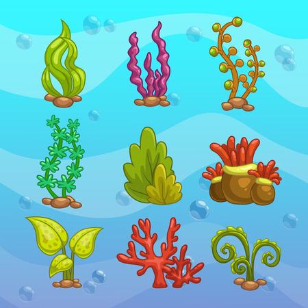 alga marina: Conjunto de algas de dibujos animados, elementos de decoración del acuario. Ilustración del vector. Vectores