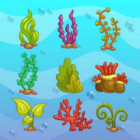 alga: Set of cartoon algae, elements for aquarium decoration. Vector illustration. Illustration