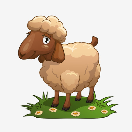 sheep wool: Cute cartoon sheep