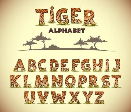 animales safari: Alfabeto del tigre, la fuente del vector con el modelo salvaje Vectores