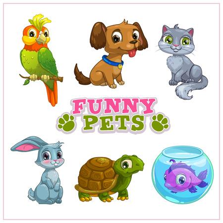 재미있는 만화 애완 동물 컬렉션, 벡터 격리 된 동물원 아이콘 일러스트