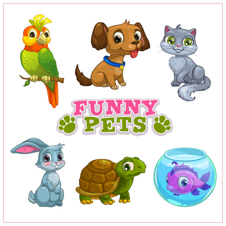 Funny cartoon pets collection, vector isolated zoo icons